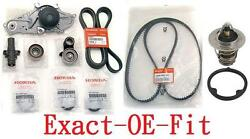 Genuine Timing Belt And Water Pump + Complete Kit Honda Acura V6 Factory Parts