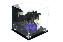 Versatile Acrylic Display- Mirror And Silver Risers 10x 10x 10 A028-sr