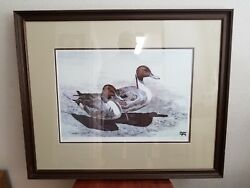 Signed Bruce Lattig Pintail Duck Decoy Watercolor Limited Edition 84/450 Excell.