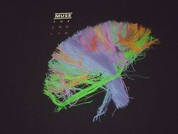 Muse Tour Shirt Used Size Xxl Very Nice Condition