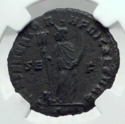 Maxentius Authentic Ancient 307ad Carthage Roman Coin Ngc Certified I79203