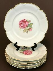 6 Hutschenreuther Sylvia Dundee Pattern Pink Rose Gold Rim Dinner Plate 10 7/8''
