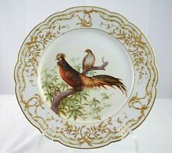 Kpm Finest 9 3/4 Plate With Bird Of Paradise, Incredible Detail And Quality