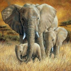 5d Diy Full Drill Diamond Painting Elephant Cross Stitch Kits Art Wall Decors