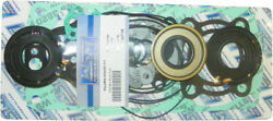Wsm Complete Engine Gasket O-ring And Seal Kit For Rebuild/overhaul 007-647-05