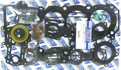 Wsm Complete Engine Gasket O-ring And Seal Kit For Rebuild/overhaul 007-676