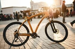 Bicycle With Wooden Frame Ash