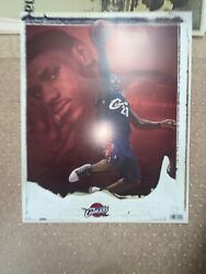 Lebron James Cleveland Cavaliers Poster 2007 16x 20