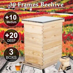 Complete Langstroth Bee Hive 10-frame 2 Deep Box 1 Medium Box Queen Excluder