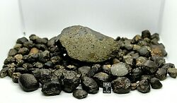 Meteorite Nwa 13113 L4 Chondrite Officially Classified And Approved Outer Space