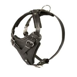 Cane Corso Strong Leather Dog Harness for Large Dogs K9 Training and Agitation