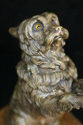 YORKIE YORKSHIRE TERRIER 19TH CENTURY INCREDIBLY WELL DETAILED BRONZE RING BOX