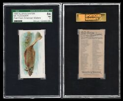 1889 N8 Allen And Ginter Fish From American Waters Flounder Sgc 84/7 1375