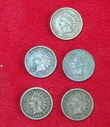 Lot Of 5 Us One Cent Indian Head 1859 1860 1862 1863 1864