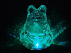 Solar Stake Garden Light Frog Brand New With Tags Beautiful Only 1 Left