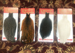 Whiting Hen Hackle - Hen Capes New