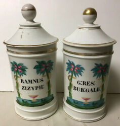 Pair Of Antique Porcelain Apothecary Jars Figural Snake Decoration Ramnus Zizyph