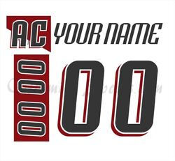 Lake Erie Monsters Customized Number Kit For 2008-2011 White Jersey