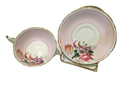 Paragon By Appointment Bone China Tea Cup And Saucer White Gold Trim Pink Floral