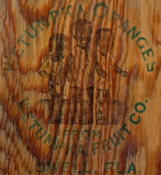 1890's Antique Wetumpka Fruit Wooden Citrus Crate Lid Label From Lowell Florida