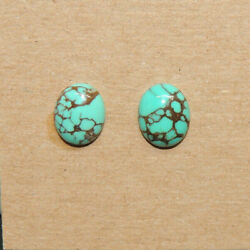 Turquoise Cabochons 8x10mm With 3.5mm Dome From Nevada Set Of 2 16278