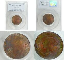 Very Beautiful And Toned 1899 Pcgs Ms64 Canada Large Cent