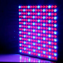 14w 1000lm 225-led Red And Blue Light Indoor Garden Plant Grow Lamp Hanging Light