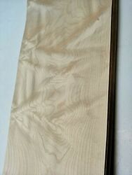 Curly Quilted Maple Veneer 170 Cm By 31 Cm  1813