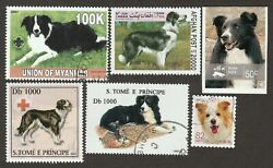 BORDER COLLIE ** Int#x27;l Dog Postage Stamp Art Collection** Great Gift Idea**