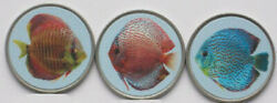 Taipa Island 2020 2 Patacas Symphysodon / Discus Fishes 3 Colored Coins Set