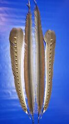 Argus Pheasant Feathers Wing / Tail. Fly Tying Crafts Salmon 44