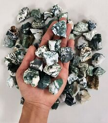 Tree Agate Crystal - 1 To 2 From India - Raw Crystals Bulk - Healing Crystals