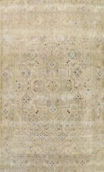 Muted Semi-antique Traditional Distressed Area Rug Evenly Low Pile Handmade 9x12