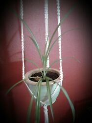Vintage Macrame Large Plant Hanger Made In Usa Boho Collectible Home Decor