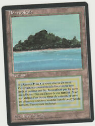 ►magic-style◄ Mtg - Tropical Island / Ile Tropicale - French Revised Fbb - Nm