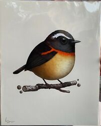 Collared Bush Robin 2016 Mike Mitchell Fat Bird Series Sold Out X/400