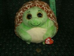 Ty Beanie Ballz 8 Zoom Turtle Med 2013 Mwmt Rare And Retired Dob2/28