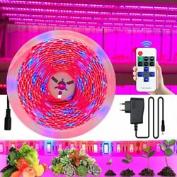 5050 Grow Light 5m 12v 4 Red 1 Blue For Greenhouse Hydroponic Plant Led Strip