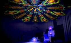 Uv Canopy 12 Petals Fluorescent Psychedelic Trance Ceiling Party Festival Deco