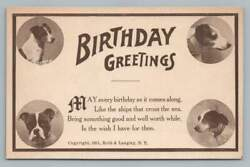 Birthday DOG Greetings Antique Terrier Postcard Roth Langley 1911