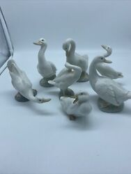 Nao Lladro Spain Porcelain Duck Figurines Set Of 8  Retired