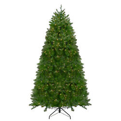 Northlight 14' Northern Pine Artificial Christmas Tree Warm Clear Led Lights