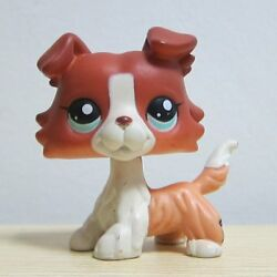 Rare Pet Shop Red Collie Dog Puppy Blue Eyes Figure LPS Rare Toys #1542 Gift