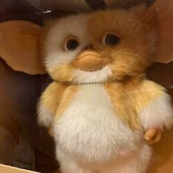 Gold Color Gizmo Gremlins Plush Doll Limited Model With Box Unopened Very Rare