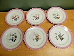 Set Of 6 Antique Hand Painted Cabinet Plates 8 1/4 With Pink Rims Flowers