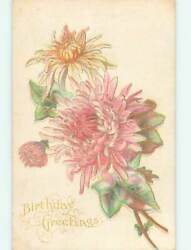 Divided-back Birthday Beautiful Pink Flowers O8939