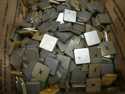 25 Lbs Scrap Amd Pinned Processors For Precious Gold Recovery