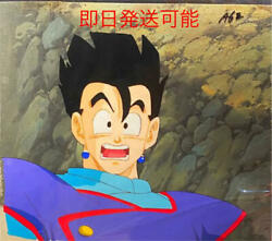 Dragon Ball Son Gohan Japan Animation Cel Painting With Background
