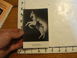Vintage Marionette Postcard The Hogarth Puppets Sparkle The Circus Horse