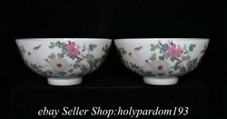 6.6 Marked Chinese Famille Rose Porcelain Water Vessel Flower Crane Bowl